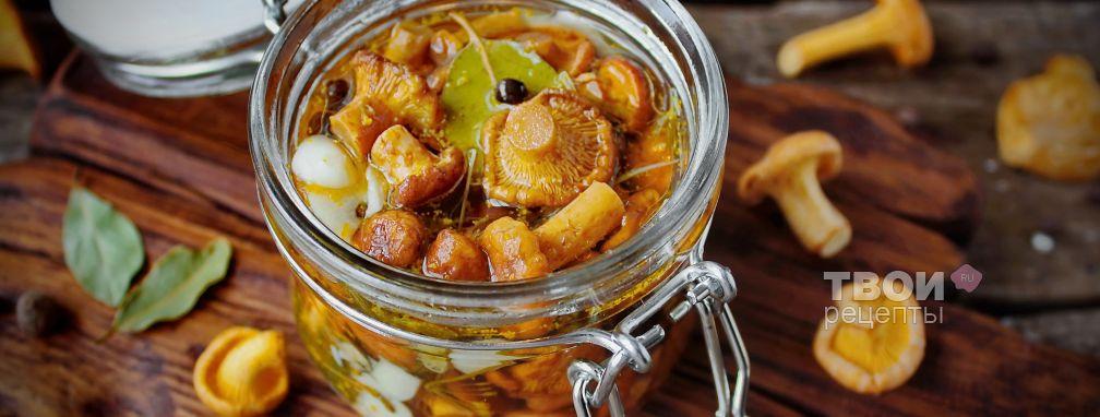 Рецепт вкусной закуски из молодых кабачков