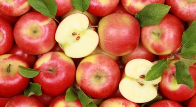 Готовим с яблоками