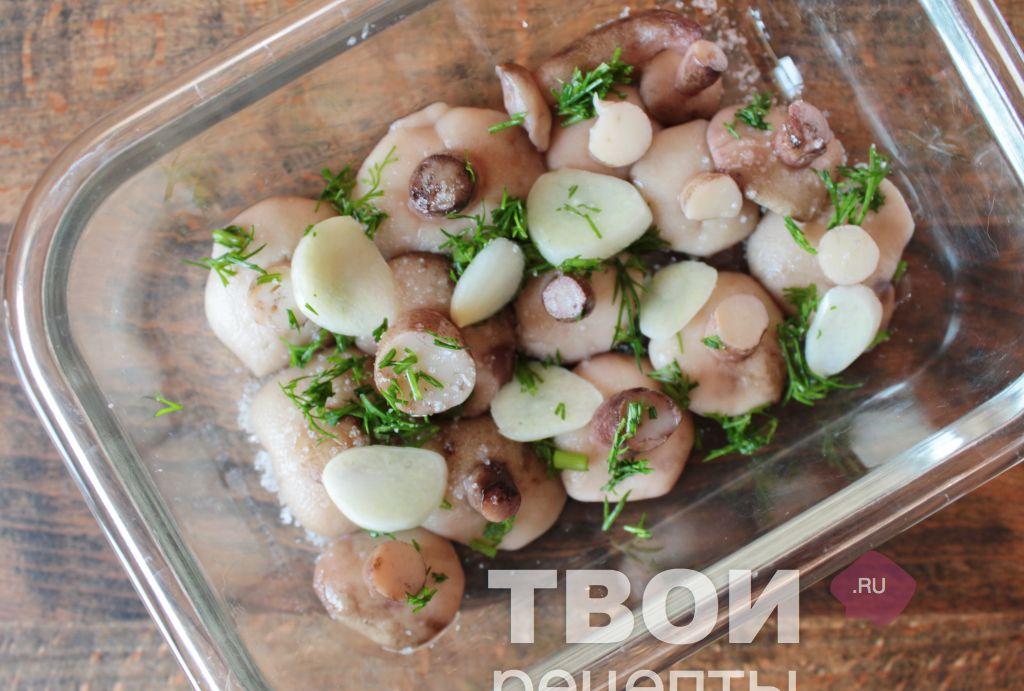 Как приготовить грибы маслята рецепт с фото