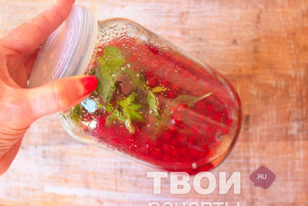 Как приготовить наливку из красной смородины в домашних условиях 262