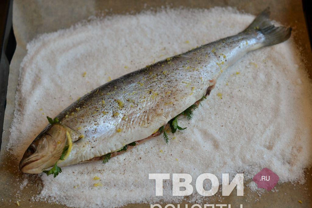 Голец рыба купить в москве