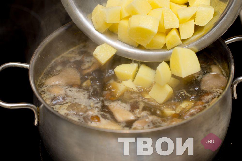 Рецепт грибной суп из лесных грибов рецепт пошагово
